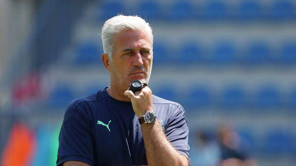 Главный тренер сборной Швейцарии по футболу Владимир Петкович