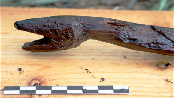 Посох в форме змеи, обнаруженный у озера на юго-западе Финляндии