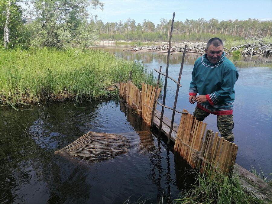 Валерий Кантеров устанавливает ловушку для рыбы