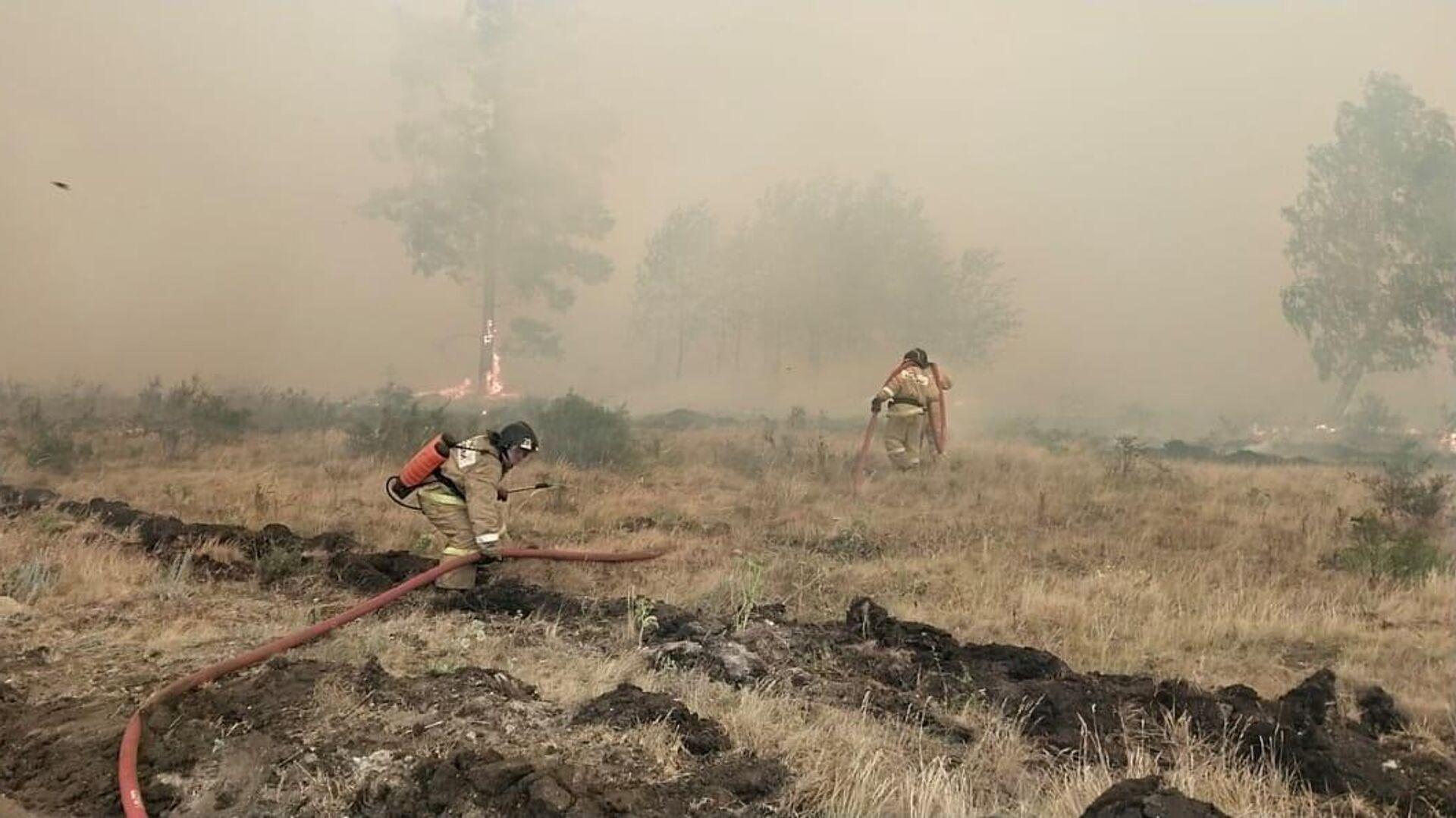 Сотрудники МЧС во время тушения лесного пожара в Челябинской области - РИА Новости, 1920, 20.07.2021