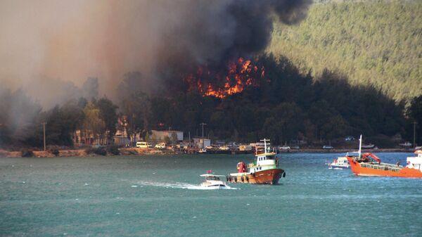 Дым поднимается от лесного пожара в прибрежном городе Бодрум, Турция