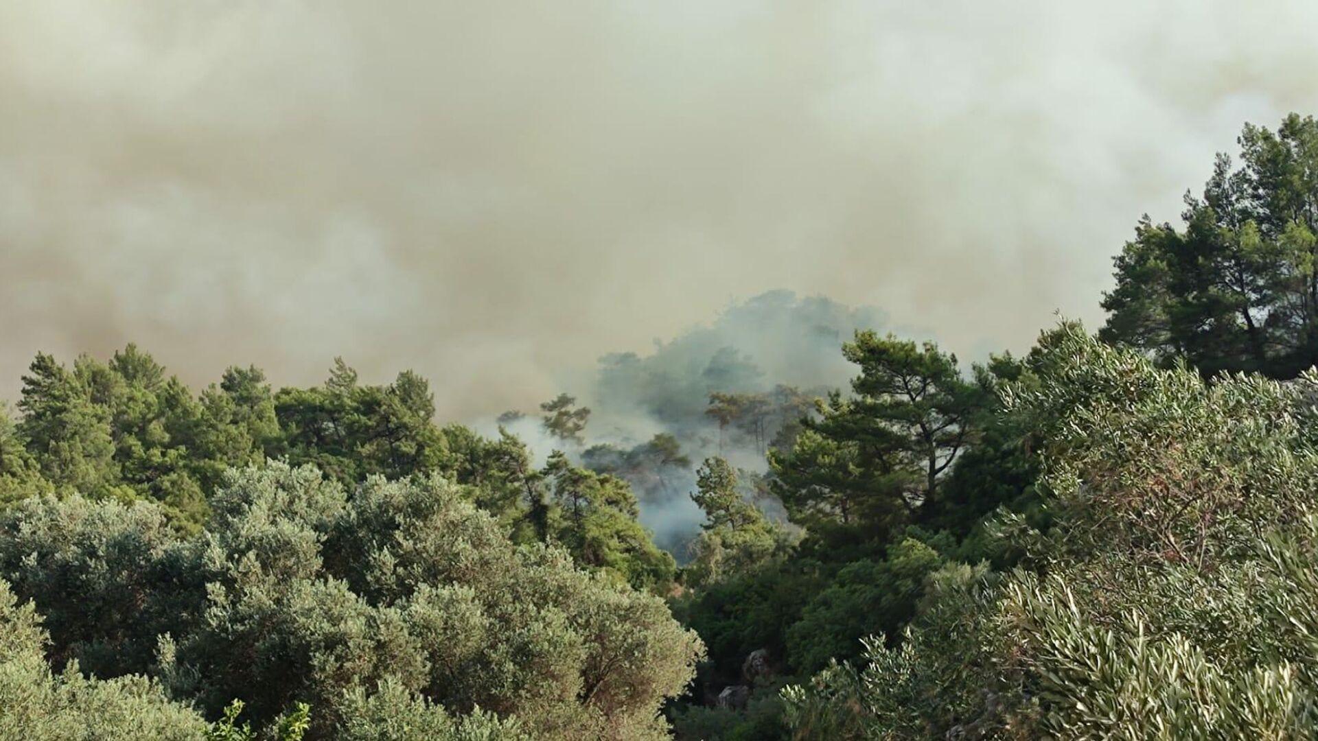 Дым от лесных пожаров в районе деревни Хисарёню в окрестностях турецкого города Мармарис - РИА Новости, 1920, 02.08.2021