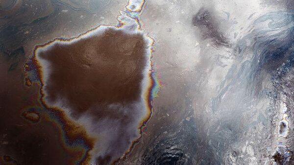 ЧП в анапском дельфинарии: нефтяная пленка на воде