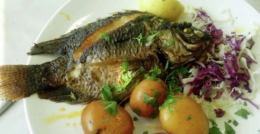 Рыба святого Петра