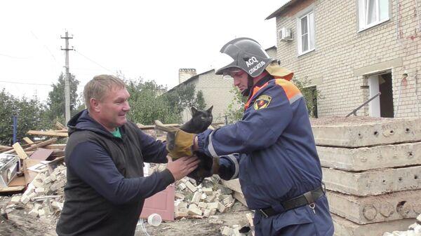 Из-под завалов в Елецком районе спасателям удалось достать кота и вернуть его владельцу