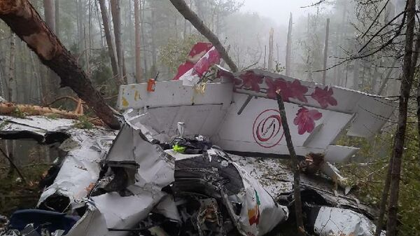 На месте жесткой посадки самолёта L-410 в Иркутской области