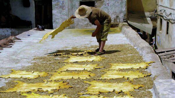 Сушка шкур на современной кожевенной фабрике в Марокко