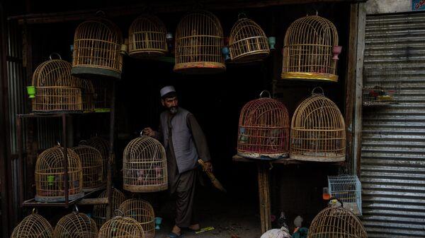 Продавец на птичьем рынке в Кабуле, Афганистан