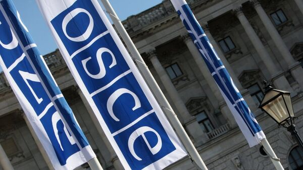 Флаги с логотипом ОБСЕ в Вене. Архивное фото.