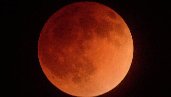 Лунное затмение над Лос-Анджелесом. Архивное фото