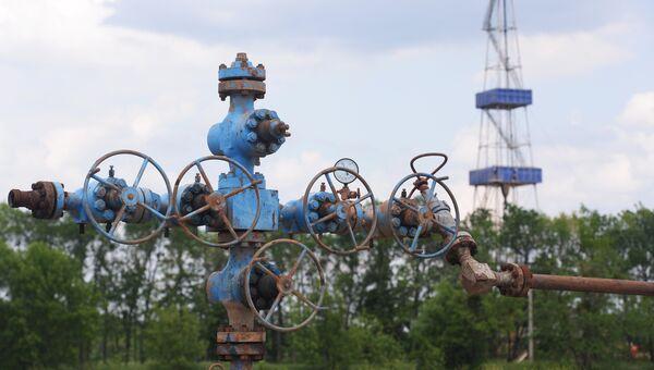 Юзовское месторождение сланцевого газа на Украине. Архивное фото