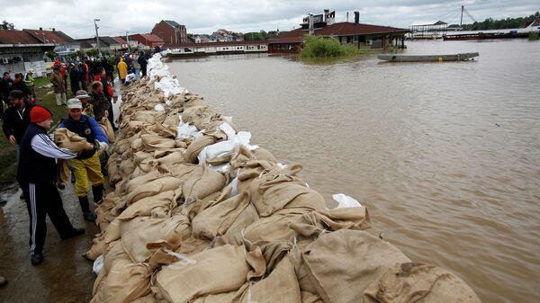 Люди строят дамбу из мешков с песком на берегу реки Савы в Сремска Митровице