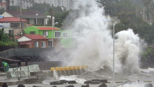 Тайфун Ногури в Японии. Архивное фото.