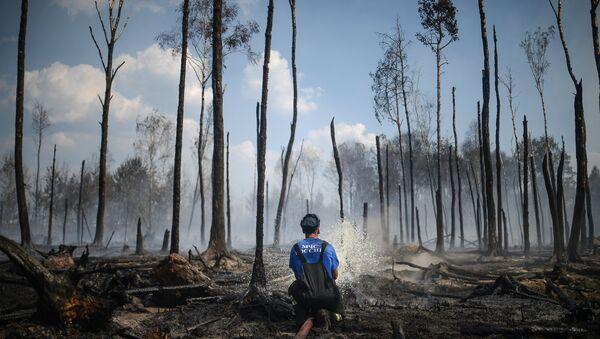 Сотрудник пожарной охраны на месте лесных пожаров в Тверской области. Архивное фото