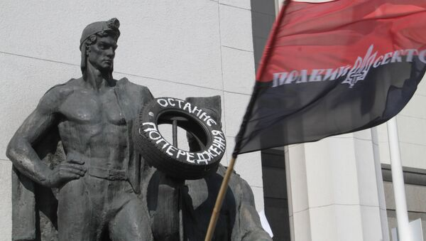 Флаг радикального движения Правый сектор. Архивное фото