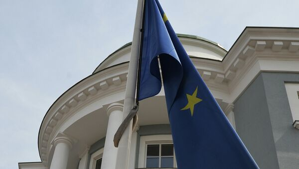 Представительство Европейского Союза в России. Архивное фото