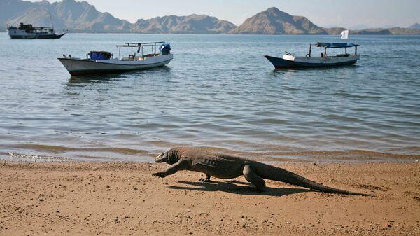 Лодки возле берега острова Комодо
