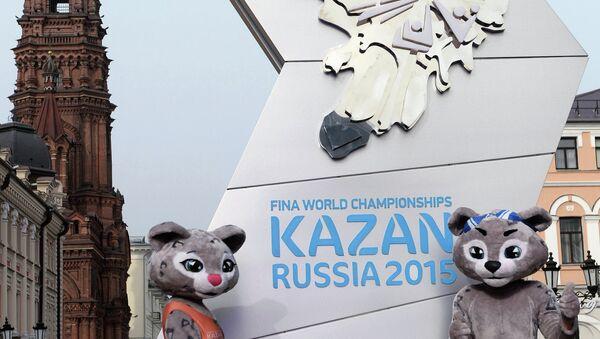 Подготовка к ЧМ по водным видам спорта в Казани. Архивное фото