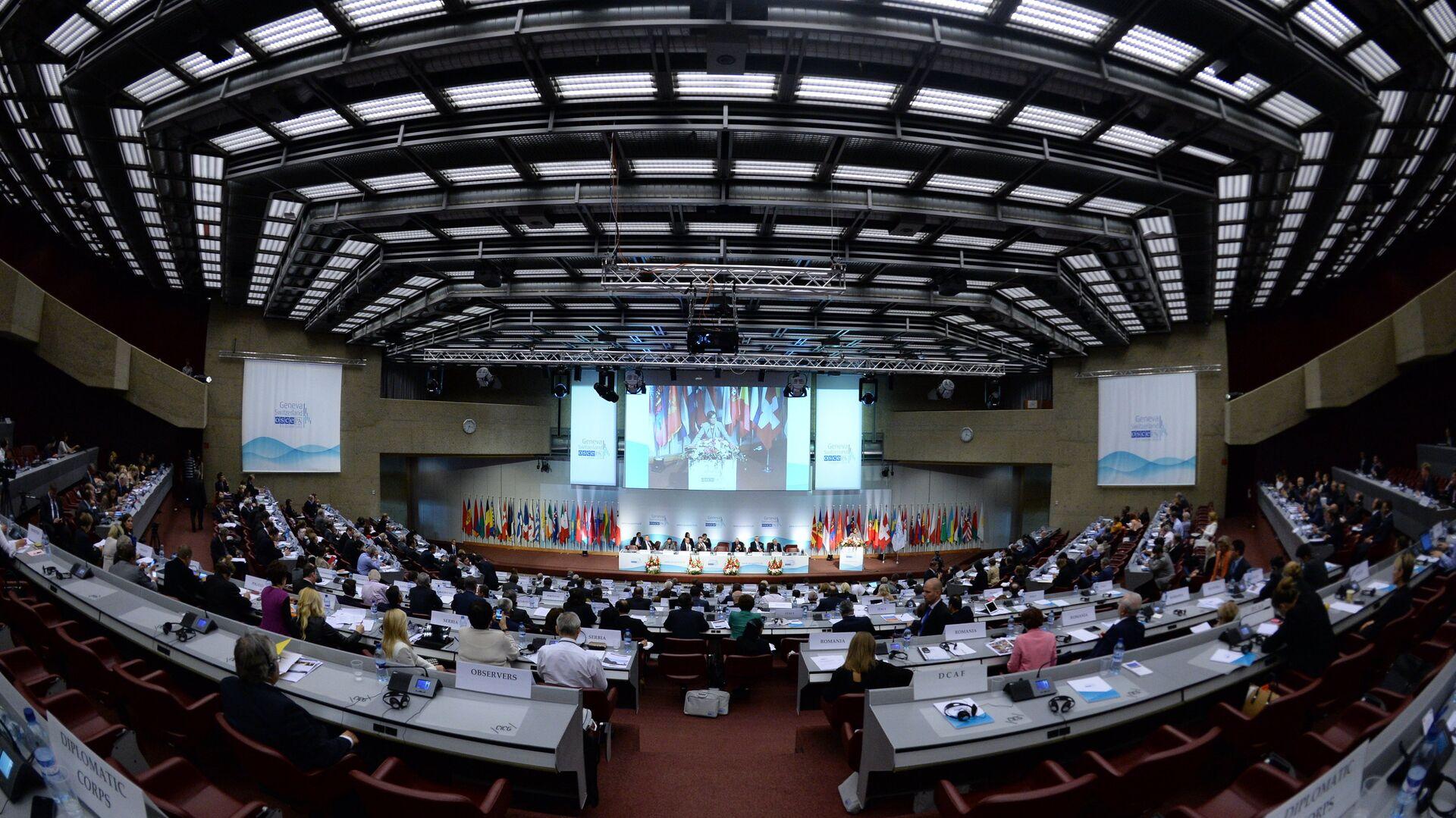 На открытии осенней сессии Парламентской ассамблеи Организации по безопасности и сотрудничеству в Европе (ОБСЕ) в Женеве - РИА Новости, 1920, 06.07.2021