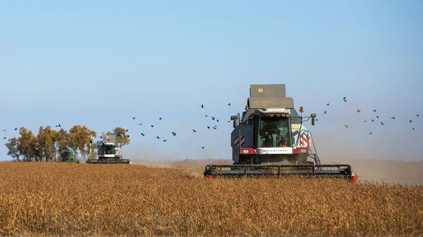 Комбайн убирает урожай. Архивное фото