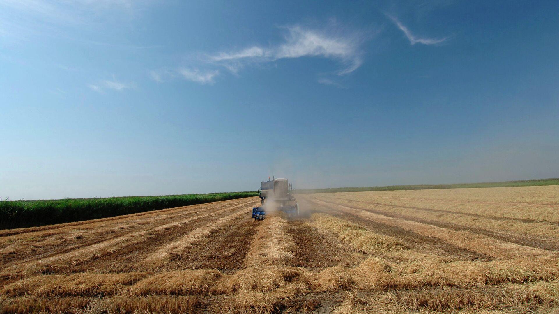 Власти Кубани сохранят все меры поддержки агропромышленного комплекса