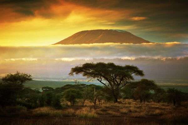 Гора Килиманджаро