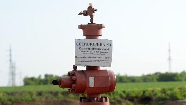 Скважина по добыче сланцевого газа в поселке Желанное Донецкой области. Архивное фото