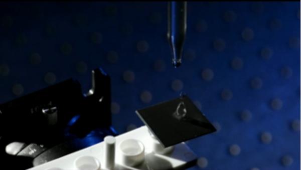 Кадр из видеоролика, в рамках которого ученые рассказывают о работе металлического лотоса