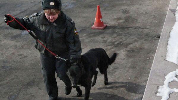 Сотрудница полиции с собакой. Архивное фото