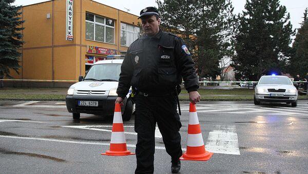 Полицейский в Чехии. Архивное фото