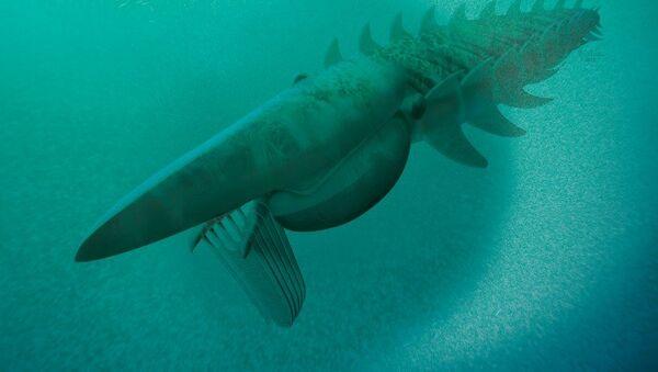 Аномалокарис - одно из животных, исчезнувших в результате Ордовикского вымирания