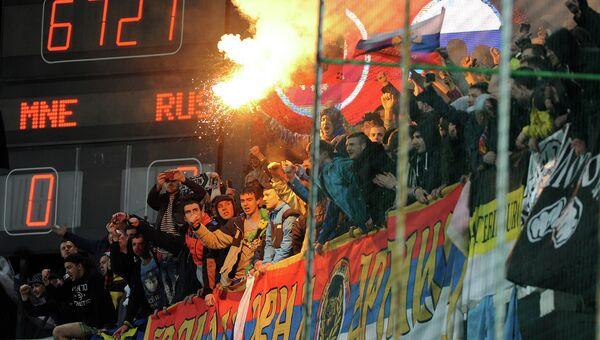 Болельщики в матче отборочного турнира чемпионата Европы 2016 между сборными Черногории и России. Архивное фото