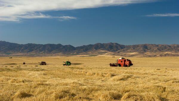 Сельскохозяйственные угодья в Казахстане