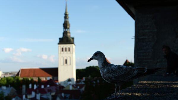 Таллин, Эстония. Архивное фото