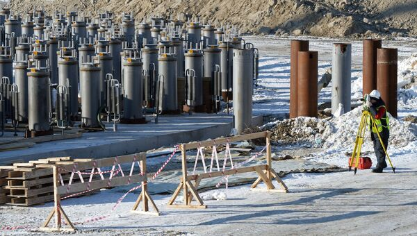 Строительство завода по производству сжиженного природного газа. Архивное фото