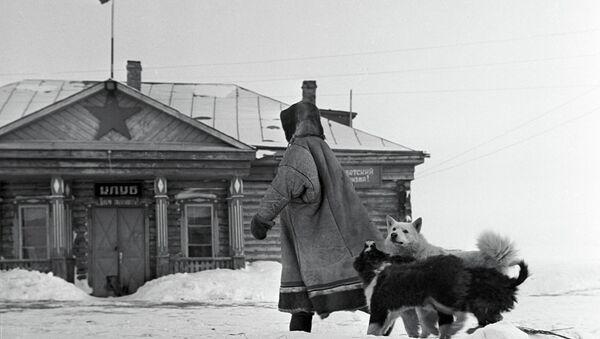 Северные лайки. Архивное фото