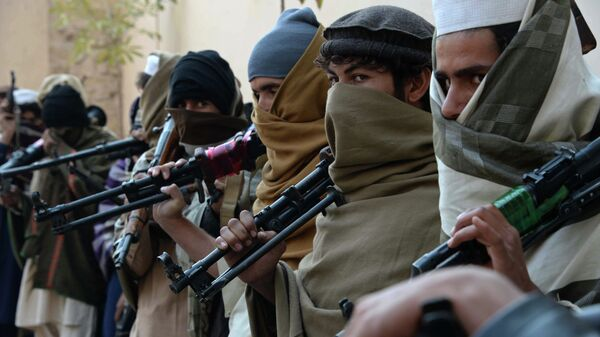 Члены движения Талибан, Афганистан