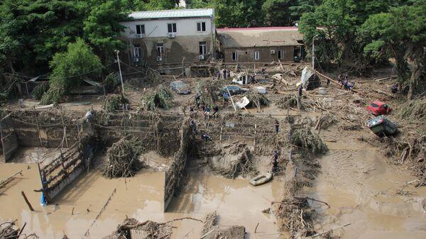 Горожане ликвидируют завалы в зоопарке Тбилиси, образовавшиеся в результате сильного ливня и последовавшего за ним наводнения в ночь на 14 июня 2015 года
