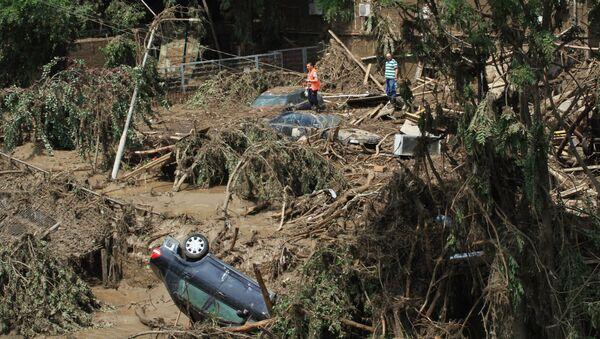 Территория зоопарка Тбилиси, пострадавшего в результате сильного ливня. Архивное фото