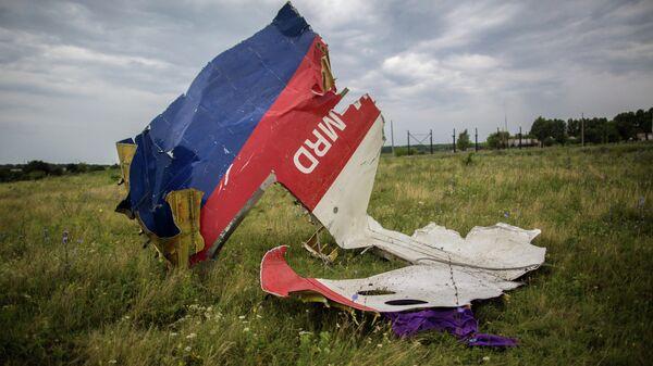 Обломки лайнера Boeing 777 Малайзийских авиалиний, потерпевшего крушение в районе города Шахтерск Донецкой области