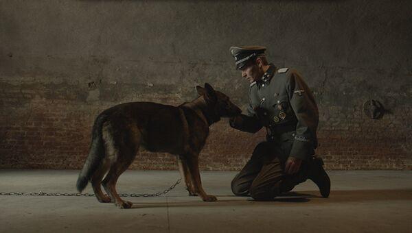 Кадр из фильма Брут
