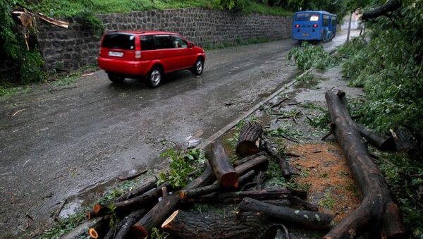 Последствия тайфуна Гони во Владивостоке. Архивное фото