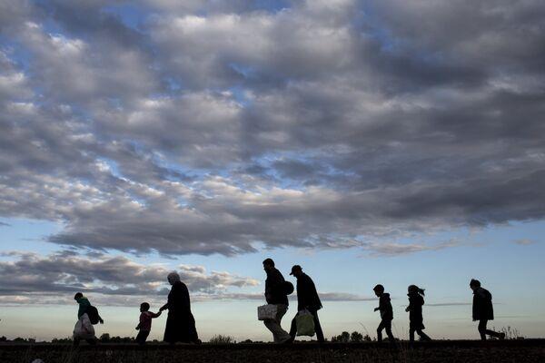 Мигранты идут в пункт сбора на территории Венгрии
