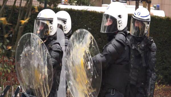 Фермеры закидали полицию яйцами и сеном на акции протеста  в Брюсселе