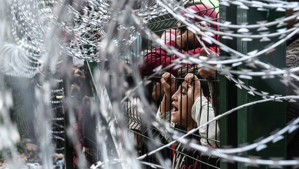 Мигранты на границе Венгрии и Сербии