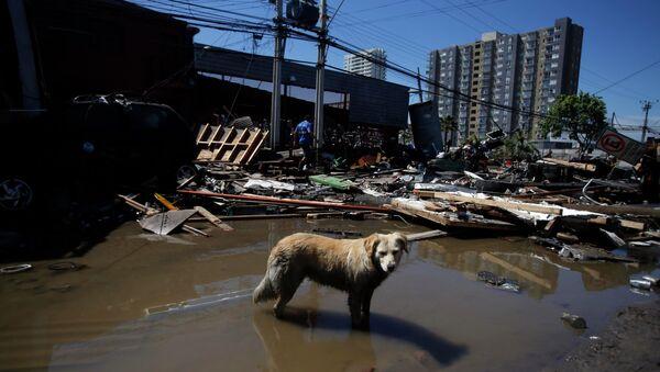 Последствия землетрясения. Архивное фото