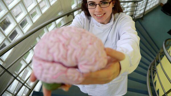 Ученый держит в руках мозг человека, страдавшего болезнью Альцгеймера. Архивное фото