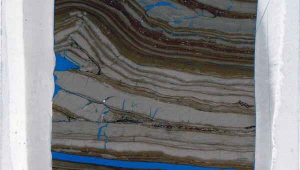 Образец «бактериальной» горной породы, найденной на западе США
