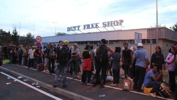 Беженцы на сербской границе ждут возможности перейти на венгерскую сторону в районе поселка Реске (Венгрия)