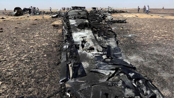 Российские и египетские специалисты на месте крушения самолета Когалымавиа, выполнявшего рейс из Шарм-эль-Шейха в Санкт-Петербург. 1 ноября 2015